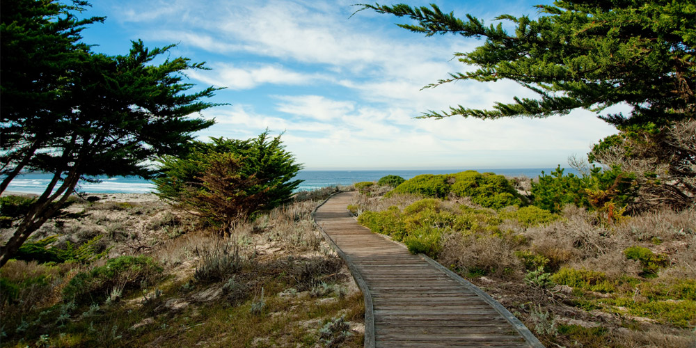 Boardwalk leading to Asilomar Beach